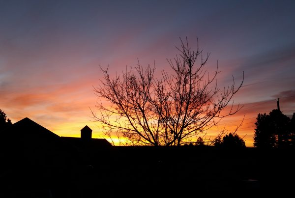 Colorado Sunrise