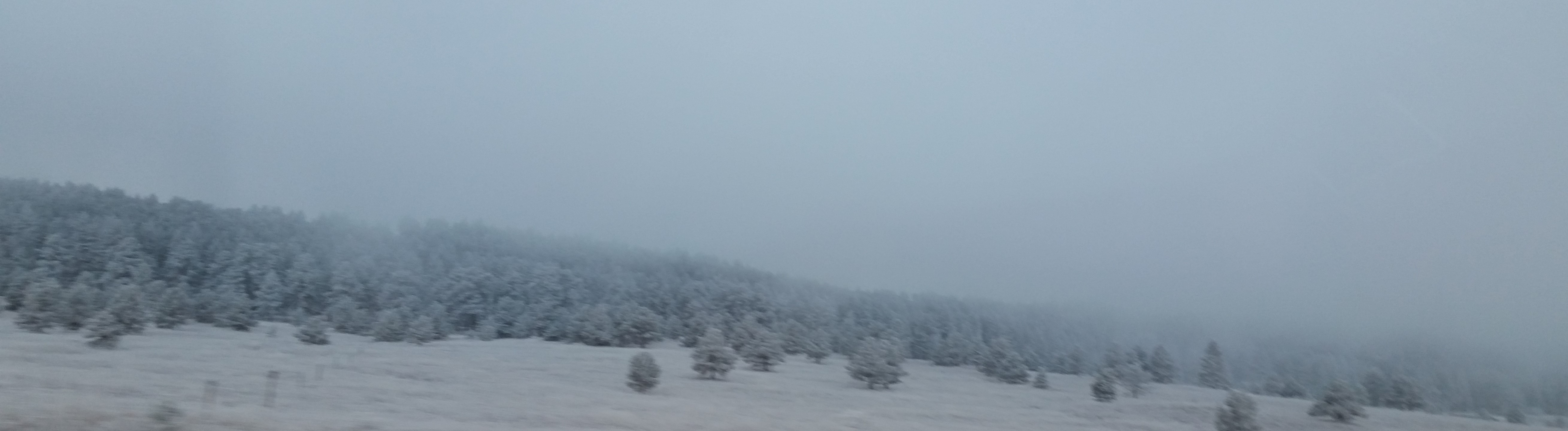 Freezing Fog in Palmer Lake, Colorado