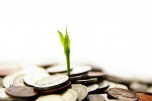 money-grow